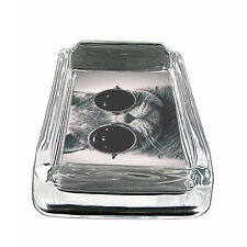 "Funny Cat Glass Ashtray D7 4""x3"" Silly Crazy Meow Cool Kitten"