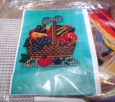 Design Works FRUIT BASKET Wall Hanging Plastic Canvas Kit Nice!