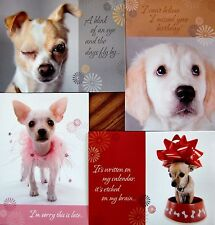 4 CHRISTIAN FAITH SCRIPTURE BELATED BIRTHDAY CARDS FAST USA SHIPPING!  #11 PUPPY