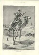 1894 The Camel Corps Of The Native Egyptian Army The Late General Herzog Rev Pon
