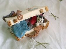 """PETER FAGAN COLOUR BOX HOME SWEET HOME CAT """"THE TRAVELLER"""""""