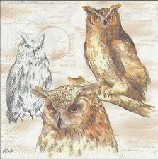 2 Serviettes en papier Oiseau Hibou Sagesse - Paper Napkins Owl Wisdom