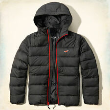 HOLLISTER BY ABERCROMBIE PUFFER JACKET/COAT GUYS L GRAY/RED NWT
