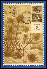 ISRAEL MK 1956 LAKE HULA SEE LAC PAPYRUS FLORA CARTE MAXIMUM CARD MC CM h1199