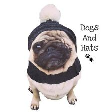 The Bobble Dog hat. Snood, Hat for your dog. Costume. Choose From 16 Colours
