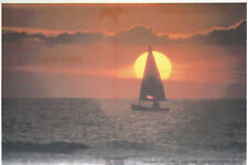 Northwest  Florida Sunset Sailboat Passing in Front of Sun  FL  Chrome  Postcard