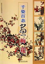 Manuel Peinture Chinoise-Chinese painting book-Ume-pittura cinese-qzbt 28p