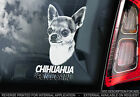 Chihuahua - Car Window Sticker - Dog on Board Sign Art Gift Short Haired - TYP3