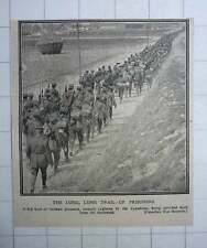 1917 German Prisoners Captured By The Canadians Marched Back From Battlefield