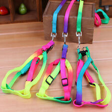 New small-sized Dog Cat Rabbit Teddy Nylon Harness Collar Leash Lead Adjustable