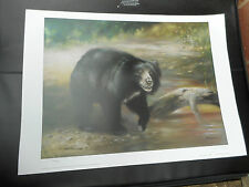 JOEL KIRK LARGE LIMITED EDITION PRINT BLACK GRIZZILY BEAR VGC LOW POST