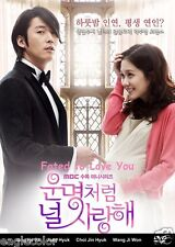 Fated to Love You Korean Drama (5DVDs) Excellent English & Quality - Box Set!
