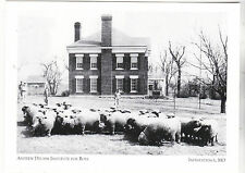 "*Postcard-""Andrew Drumm Institute For Boys""(Rams in Front) *Independence MO(#206"