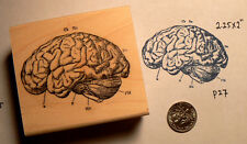 Brain rubber stamp WM P27