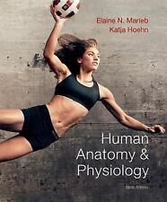Human Anatomy and Physiology by Elaine N. Marieb and Katja N. Hoehn (2012, Hardc