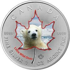 $5 2016 Canada Wildlife III. - 1 oz Colored Silver Maple Leaf - Polar Bear
