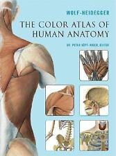 The Color Atlas of Human Anatomy-ExLibrary