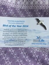 Not RSPB Birdlife South Africa Bird Of The Year 2014 Tristan Albatross