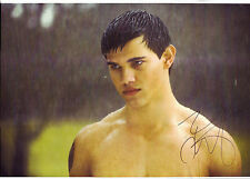 "Signed Autograph  12x18"" TAYLOR LAUTNER Sexy Twilight Jacob Black photo poster"