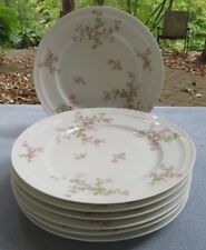 Set of SEVEN Haviland Schleiger 29 Wild Roses Dinner Plates