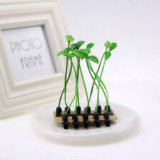 Hot 5PCS Funny Bean Sprout Antenna Green Plant Hairpins Hair accessories Unisex