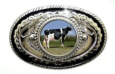Holstein Cow Friesian Cattle Dairy 4h FFA Livestock Domestic Belt Buckle