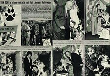 Coupure de Presse Clipping 1975 (2 pages) Le Chien Won Ton Ton