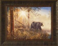 SHADOW IN THE MIST by Jim Hansel 17x21 Black Bear Sunrise FRAMED PRINT PICTURE