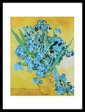 Vincent van Gogh Vase mit Iris Poster Bild Kunstdruck im Alu Rahmen 40x30cm
