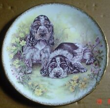 Royal Vale England Collectors Plate COCKER SPANIEL PUPPIES