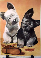 West Highland Terrier, Scotty Puppy Print, Lithograph, 1941, Ready to Frame