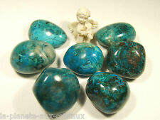 CHRYSOCOLLE MALACHITE Galet poli 25-30 mm de long EXTRA