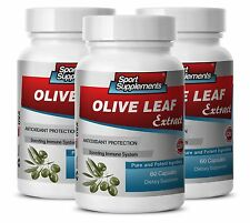 Blood Pressure Supplements - Olive Leaf Extract 500mg - Health Benefits Pills 3B