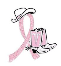 Breast Cancer Cowgirl Cowboy Western Boots Hat Pink Glitter Ribbon Lapel Pin New