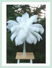 1 SINGLE SNOW WHITE OSTRICH FEATHER 14-16""