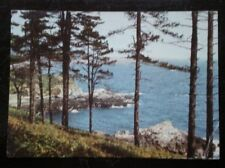 POSTCARD GUERNSEY JUMBO SIZE - PINES AT ST MARTIN'S