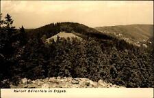 Bärenfels im Erzgebirge alte DDR Postkarte 1964 Blick auf den Schihang im Sommer