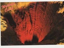 Waitomo Caves Tomo New Zealand Postcard 078a