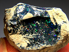 54.1 ct New Found Natural Black Opal Rough, Ethiopia! Opal277