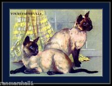 English Picture Siamese Cat Cats Kitten Kittens Twins Art Vintage Poster Print