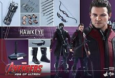 HOT TOYS Avengers 2 Age of Ultron: Hawkeye