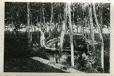 PHOTO ANCIENNE - VINTAGE SNAPSHOT - VOITURE DÉCAPOTABLE CAMPING FORÊT - OLD CAR