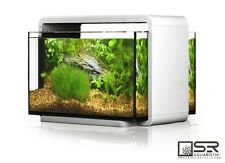 SALE!  Desk Top All Glass 6.6 Gal Nano Aquarium w Dimmable LED Lighting & Filter