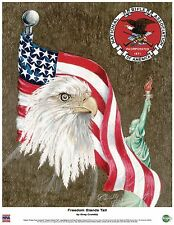NRA EMBLEM, BALD EAGLE, US FREEDOM FLAG, STATUE OF LIBERTY 16x20 LITHOGRAPH
