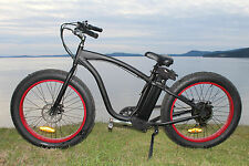 Fat Tire electric bike cruiser (we carry spare parts as well) VERY IMPORTANT!!!