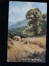 OLD POSTCARD OF HARVEST TIME LIETH HILL, SURREY - USED 1905