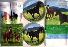 WILD HORSES - Birthday Party Supply Kit w/ Stickers