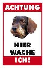 Blechschild - DACKEL RAUHAARDACKEL -  HIER WACHE ICH -  20x30 cm 23009