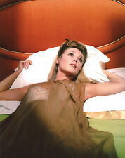Sharon Tate Valley of the Dolls 8x10 photo T1367