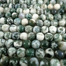 Natural Tree Agate Beads Strands Medium SeaGreen 10mm